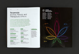 Green A Field Guide to Marijuana Aroma and Flavours